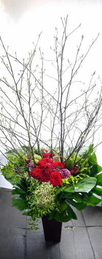 事務所移転のお祝いにアレンジメント。「華やかな雰囲気」。新琴似5条にお届け。2019/04/24。 - 札幌 花屋 meLL flowers