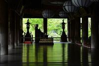 長谷寺に行ってきました。 - 近隣の野鳥を探して