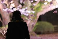 桜の約束 - Aruku