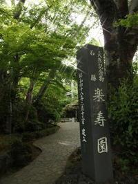 静岡へ遊びに行く - 元祖 一宮水密