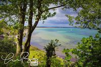 イギリスのビーチ - Millieの英国ドーセットLiFE