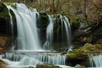 猿壺の滝へ - 彩