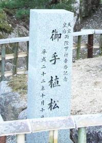 桜井市長谷寺天皇陛下御手植松 - 魅せられて大和路