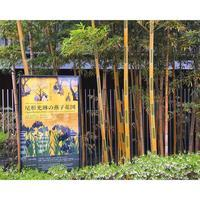 根津美術館と太田記念美術館 - カエルのバヴァルダージュな時間