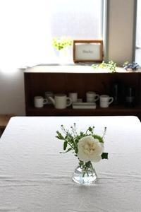 パンを作れるようになるって、やっぱり素晴らしい! - ちぎりパン 日本一簡単なパン教室 Backe