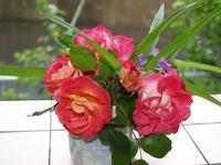 美しいバラの花と感謝の日 - 織月紅希の真っ赤な月窯ギャラリー
