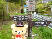 ☆リラ登山in 金時山☆ - やいやい畑