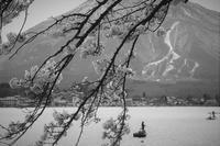 lake NOJIRIKO - フォトな日々
