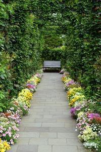 横浜イギリス館周辺ガーデンの様子を見に行ってきました。 - バラとハーブのある暮らし Salon de Roses