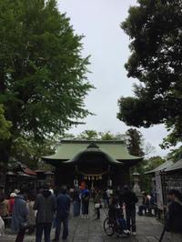 神社巡り『御朱印』⛩菊田神社 令和元年 - ハタ坊(釣り・鳥撮・散歩)