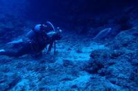 19.5.1令和初日、って言う事でね。 - 沖縄本島 島んちゅガイドの『ダイビング日誌』