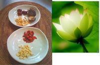 せさみ 自然派お料理教室 〜毎日の食事で体質改善!〜 - ナチュラル キッチン せさみ & ヒーリングルーム セサミ
