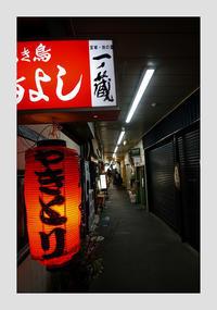 仙台 -66 - Camellia-shige Gallery 2