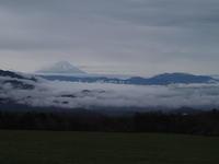 令和初日の富士山 - 八ヶ岳 革 ときどき くるみ