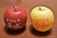 平成から 祝令和 - Koko no hana