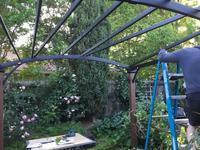 パティオに作る葡萄の日除け - ちょっと田舎暮らしCalifornia