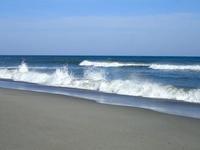 表浜海岸の春 - 弓張放浪