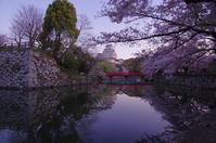 早朝の桜 in 姫路城(2019/4/13)其の① - 南の気ままな写真日記