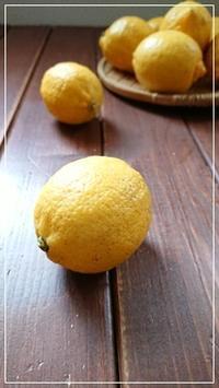 国産レモン - 十色記