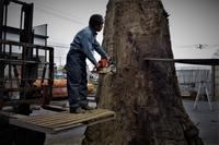 神代杉鳥海山製材 - SOLiD「無垢材セレクトカタログ」/ 材木店・製材所 新発田屋(シバタヤ)