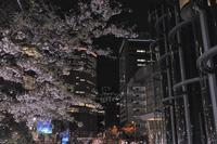 久々の夜行バス - 竹光天然流