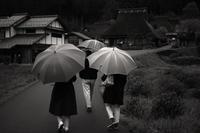 美山散歩 - Life with Leica