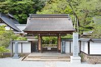 室生寺(平成最後のお寺参り) - 近隣の野鳥を探して