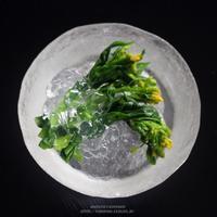 業界初の透明つゆとアガーを使って~菜の花のふるふる出汁(だし)ジュレがけ。 - 薬膳料理と酒肴のレシピブログ~ゆりぽむの今宵も酔い宵。