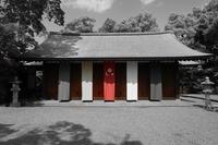「令和元年初参り-花の城南宮神苑-」 - ほぼ京都人の密やかな眺め