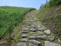 Invitation of Kumanokodo walking from May 熊野古道歩こう会5月~6月のご案内 - 熊野古道 歩きませんか? / Let's walk Kumano Kodo