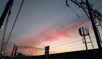 5月2日夕景 - TACOSの野鳥日記