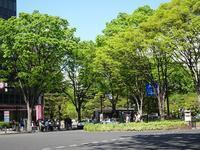 新緑の季節に - blueletter