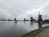 ザーンセスカンス風車村を観光♪アムステルダムからの行き方(オランダ旅行記) - neige+ 手作りのある暮らし