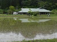 十連休も七日目―やっと一日中、晴れました - 千葉県いすみ環境と文化のさとセンター