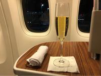 2019☆Bali(32)~ガルーダインドネシア航空ビジネスクラス復路の機内食 - パルシステムのある生活♪