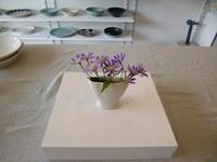 二連鉢の石膏型作りと強くて可憐な花 - サンカクバシ 土と私の日記