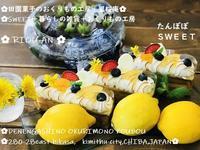 母の日のおくりものたんぽぽスイーツ - 田園菓子のおくりもの工房 里桜庵