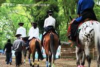 下鴨神社に行く5月-8 - 写楽彩2