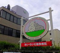 動物病院と鈴木輝一郎5月4日(土) - しんちゃんの七輪陶芸、12年の日常