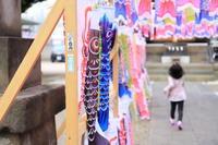 寄り道満載の東京タワー鯉のぼりカメラ散歩。 - うろ子とカメラ。