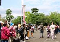浅草寺境内の空に泳いでいた鯉のぼり(^^♪ - 自然のキャンバス