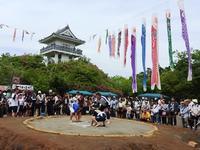 連休8日目~この時期らしい陽気となりました~ - 千葉県いすみ環境と文化のさとセンター