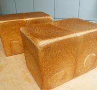 5月の教室予定 - 手作りパン・料理教室(えぷろん・くらぶ)