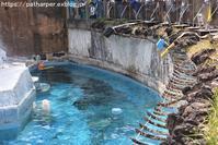 2019年4月天王寺動物園その3 - ハープの徒然草