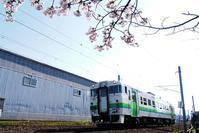 5月4日今日の写真 - ainosatoブログ02