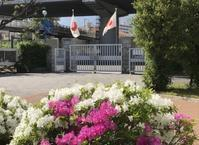 国旗が掲げられたキャンパスの清掃活動 - 島暮らしのケセラセラ