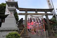 【白山神社】 - うろ子とカメラ。