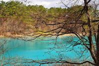 弁天沼ターコイズブルーの水辺Ⅱ - 風の香に誘われて 風景のふぉと缶