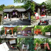 蒲生八幡神社 - EVOLUTION