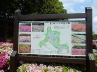 つつじ厚木つつじの丘公園 - NPHPブログ版